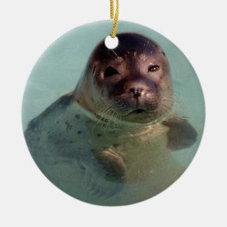 Cría de foca Ornaemnt Adorno Redondo De Cerámica