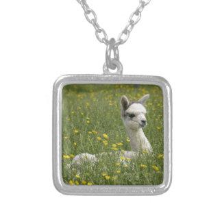 Cria In Buttercups Square Pendant Necklace