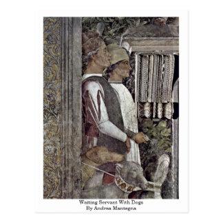 Criado que espera con los perros de Andrea Mantegn Postales