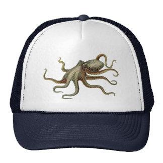 Criatura náutica del mar del pulpo del vintage gorras de camionero