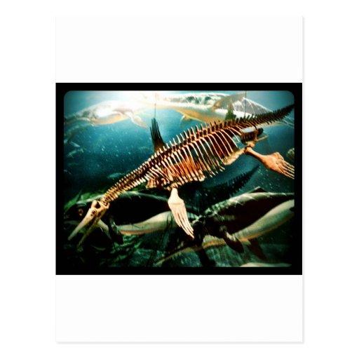 Criatura subacuática prehistórica del mar - Loch N Tarjeta Postal