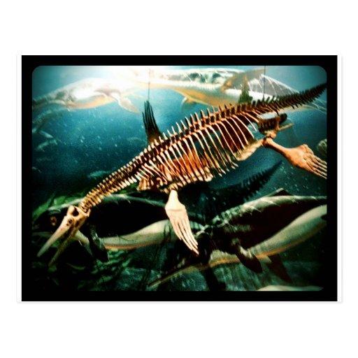 Criatura subacuática prehistórica del mar - Loch N Postal