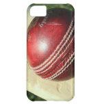 cricket-ball-and-bat.jpg