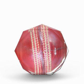 Cricket BALL Acrylic Award