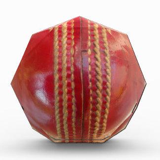 Cricket Ball.jpg Acrylic Award