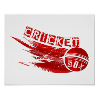 Cricket Ball Sixer Poster
