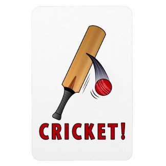 Cricket Bat and Ball: Bring It! Magnet