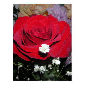 CricketDiane Red Rose and Silk Flowers Postcards