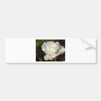CricketDiane Romantic White Rose Blossom Bumper Sticker
