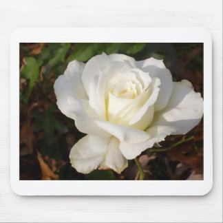 CricketDiane Romantic White Rose Blossom Mouse Pad