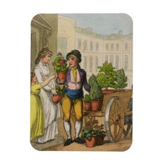 Cries of London The Garden Pot Seller 1799 colo Rectangle Magnets