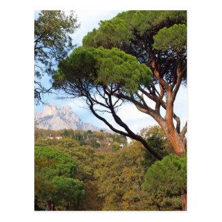 Crimea, views of Mount Ai-Petri Postcard