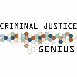 Criminal Justice Genius Photo Cutouts