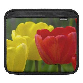 Crimson and Brilliant Yellow Tulip iPad Sleeve