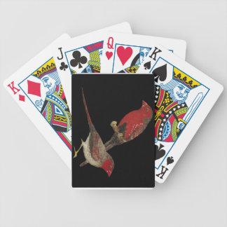 Crimson Finch (black-bellied) Pair Bicycle Playing Cards