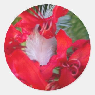 Crimson.jpg extranjero hermoso pegatina redonda