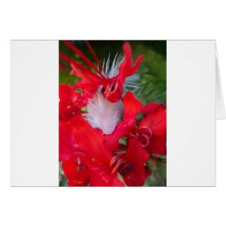 Crimson.jpg extranjero hermoso tarjeta de felicitación