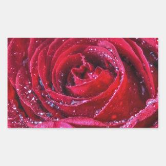 Crimson Rose Sticker