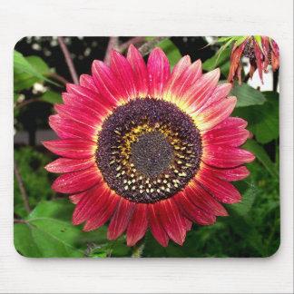 Crimson Sunflower Mouse Pad