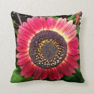 Crimson Sunflower Pillows