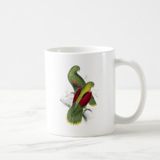 Crimson-Winged Parrakeet (Female and young male) b Coffee Mug