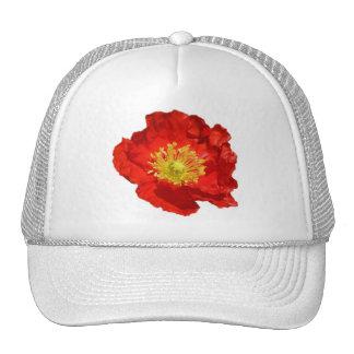 Crinkled Red Poppy Mesh Hats