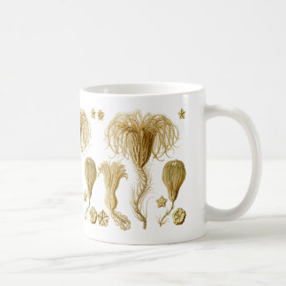 Crinoids Classic White Coffee Mug