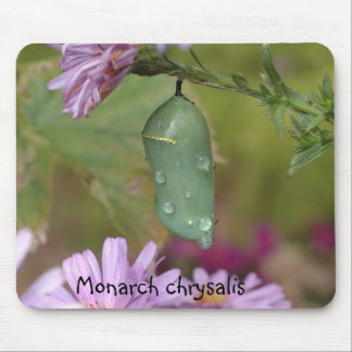 Crisálida del monarca alfombrilla de ratón