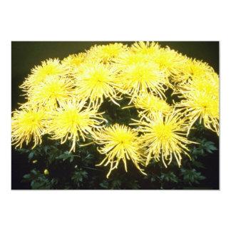 """crisantemo amarillo """"araña del amarillo"""" (florista invitación 5"""" x 7"""""""