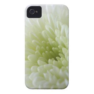 Crisantemo blanco Case-Mate iPhone 4 carcasa