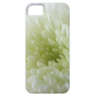Crisantemo blanco iPhone 5 carcasa
