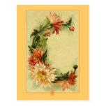Crisantemo del alfabeto C de la flor de Catherine Tarjeta Postal