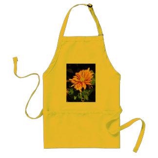 Crisantemo - delantal amarillo y anaranjado ardien
