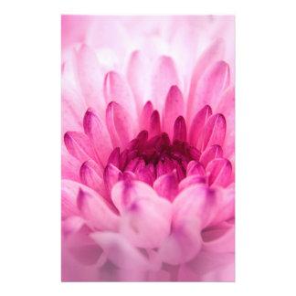 "crisantemo folleto 5.5"" x 8.5"""
