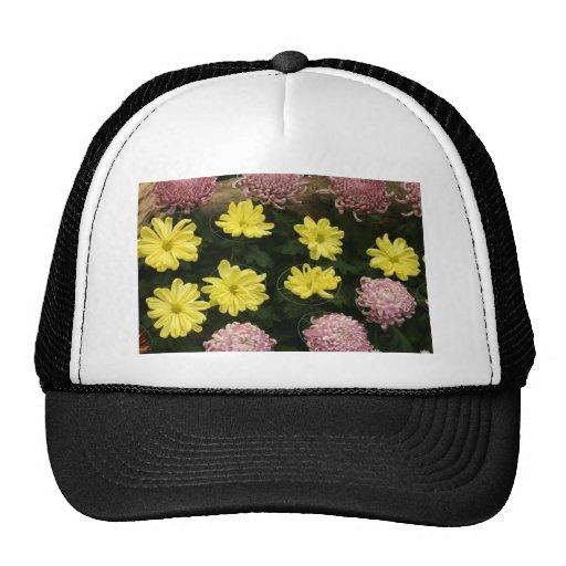 Crisantemo Gorra