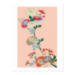 Crisantemo japonés postal