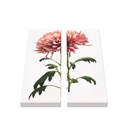 Crisantemo Shelbers Impresión En Lona Estirada