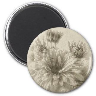 Crisantemos 1 del oro y de Brown Antiqued Imán Redondo 5 Cm
