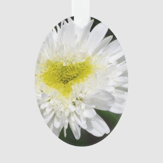 Crisantemos blancos bonitos