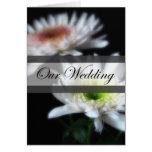 Crisantemos blancos que brillan intensamente 4 nue felicitacion