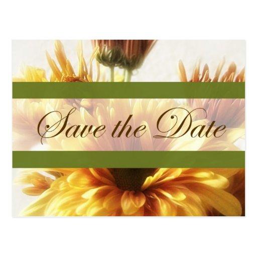 Crisantemos del oro y de Brown 1 reserva la fecha  Postales