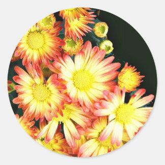 Crisantemos Pegatina Redonda