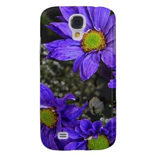 Crisantemos púrpuras del verde azul