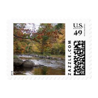 Crisp Autumn leaves fallen by riverside stamps