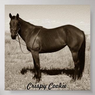 Crispy Cookie Poster