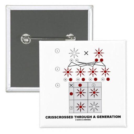 Crisscrossed Through A Generation (Punnett Square) Pinback Button