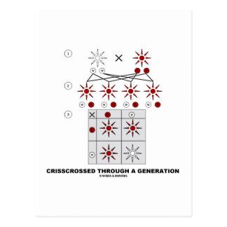 Crisscrossed Through A Generation Punnett Square Post Cards