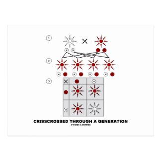 Crisscrossed Through A Generation (Punnett Square) Postcard