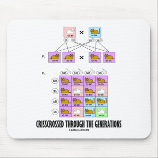Crisscrossed Through The Generations (Cat Punnett) Mouse Pad