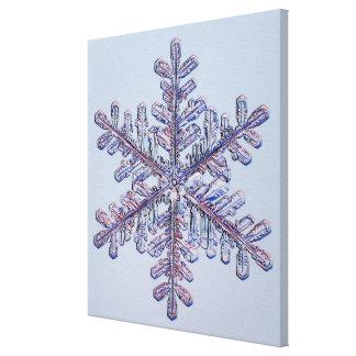 Cristal del copo de nieve lona envuelta para galerias
